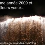 Bonne année 2009 sur visites-gourmandes