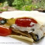Lasagnes froides aux légumes d'été (tomates et courgettes)
