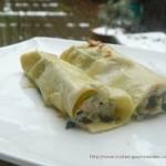 Cannellonis de fêtes , saumon , épinard et ricotta