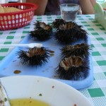 Burrata, oursins et autres souvenirs du Salento